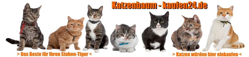 katzenbaum-kaufen24.de